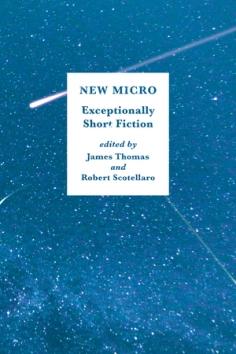 New Micro cover